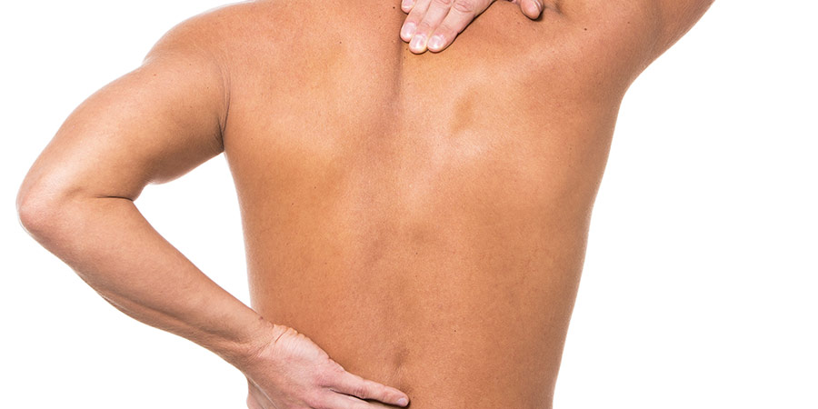 Cómo-está-formada-la-columna-vertebral