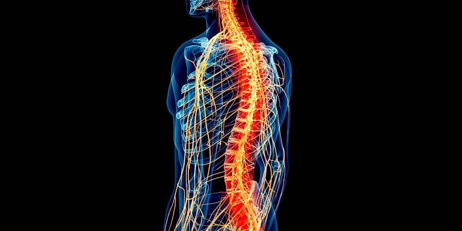 Síntomas-de-que-existe-un-tumor-en-la-médula-espinal